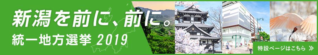 2019年新潟県統一地方選挙